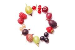 Fruits frame Stock Photo