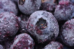 Fruits frozen blueberries with selective focus Stock Photography