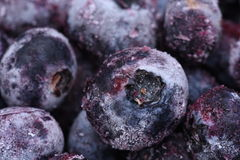 Fruits frozen blueberries with selective focus Royalty Free Stock Image