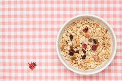 Fruits granola Stock Image