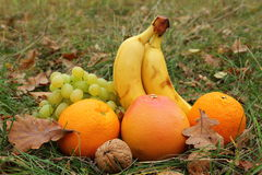 Fruits in a grass Royalty Free Stock Images