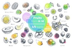 Fruits hand drawn icons set. Fresh organic food vector illustration