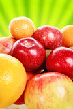 Fruits harvest Royalty Free Stock Photography