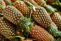 Fruits. Healthy Raw Food. Organic Pineapples. Nutrition, Vitamin Stock Image
