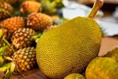 Fruits. Healthy Vegan Raw Food. Organic Ripe Jackfruit. Nutritio Stock Photography