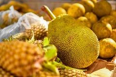 Fruits. Healthy Vegan Raw Food. Organic Ripe Jackfruit. Nutritio Royalty Free Stock Photos