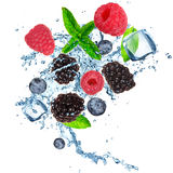 Fruits in ice cube Stock Photography