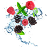 Fruits in ice cube Royalty Free Stock Photography