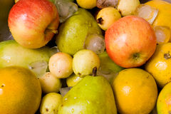 Fruits an ice III Royalty Free Stock Photo