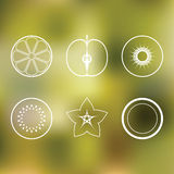 Fruits Icon Pack Royalty Free Stock Images