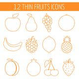 Fruits icon set. Colorful template for cooking, Royalty Free Stock Image