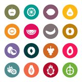 Fruits icon set.  Vector Illustration Stock Images
