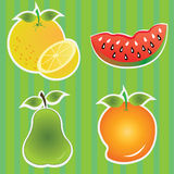 Fruits icons. Different fruits icons on special green background Royalty Free Stock Photos