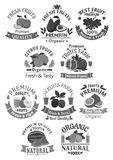 Fruits icons for farm store or juice vector label royalty free illustration