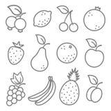 Fruits icons Stock Photo