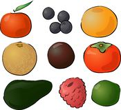Fruits illustration Royalty Free Stock Images