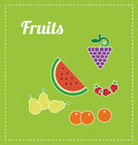 Fruits illustration. Illustrations of fruits. Vectors. green Royalty Free Stock Photo