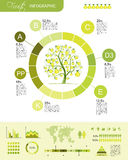 Fruits infographic for your design Royalty Free Stock Photos