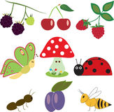 Fruits and insects Stock Photo