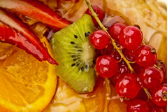 Fruits in jelly Stock Image
