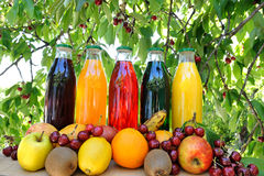 Fruits juice royalty free stock photo