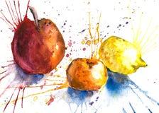 Fruits juteux dans un pulvérisateur Photo libre de droits