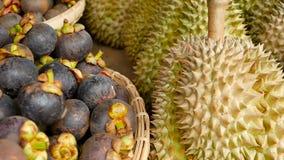 Fruits juteux doux tropicaux de saison mélangée, marché local de la Thaïlande Grands durian et mangoustan de Monthong banque de vidéos