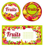 Fruits labels set Stock Photography