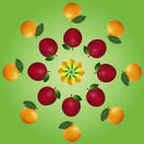 Fruits layers. First layer are lemons, second layer are apples and third layer are oranges Stock Photography