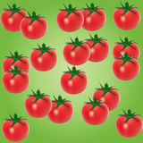 Fruits layers. Many tomatoes on a green background Stock Photo