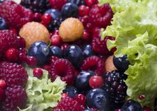 Fruits and lettuce Stock Image