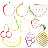Fruits in Line Art Royalty Free Stock Images