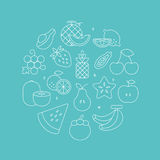 Fruits line icon circle set Stock Image