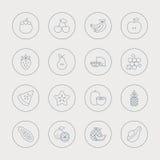 Fruits line icon set Royalty Free Stock Photos