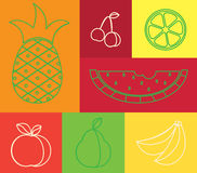 Fruits linear set Royalty Free Stock Image