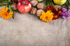 Fruits on linen background Royalty Free Stock Photos