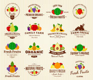 Fruits Logos, Labels and Design Elements Royalty Free Stock Photos