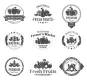 Fruits Logos, Labels and Design Elements Stock Photos