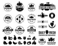 Fruits Logos, Labels, Fruits Icons and Design Elements Royalty Free Stock Photos