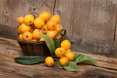 Fruits of loquat tree stock images