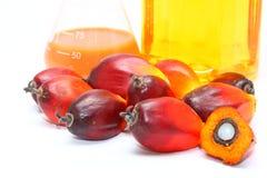 Fruits mûrs de palmier à huile avec de l'huile de palmier Image libre de droits