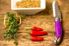Fruits mûrs et rouges de piment avec des herbes Image stock