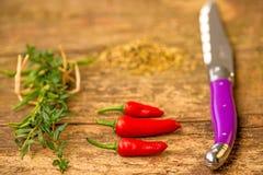 Fruits mûrs et rouges de piment avec des herbes Images stock