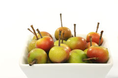 Fruits of the Malus Pumila Royalty Free Stock Photo