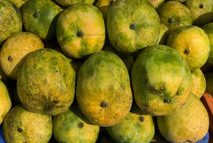 Fruits-Mango. Fruits- Mango- Scientific name is mangifera indica- ripened fruit piled up for sale- species of mango in the Anacardiaceae family found in the wild Royalty Free Stock Image