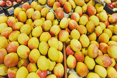Fruits Mangoes Market Stock Photos