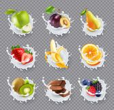 Fruits Milk Splashes Realistic Set. Set of realistic milk splashes with fruits including berries and chocolate  on transparent background vector illustration Royalty Free Stock Photos