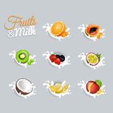 Fruits and Milk Vector Illustrations Set Royalty Free Stock Photos