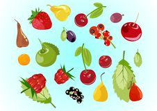 Fruits mix. Fruits composition in  to be used in appropriate context Royalty Free Stock Photo