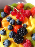 Fruits multicolores Photographie stock libre de droits